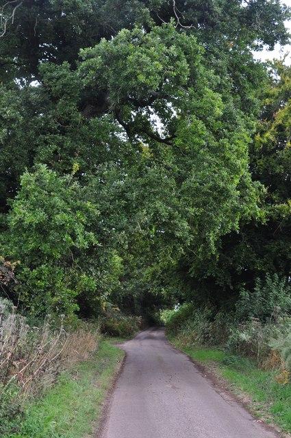 Teignbridge : Country Lane