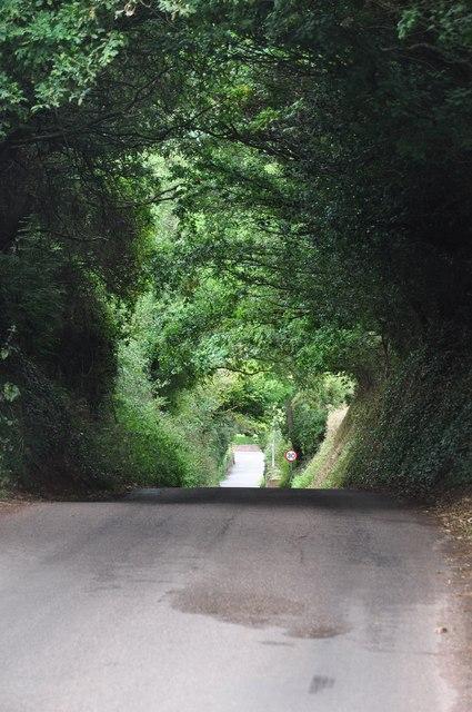 Teignbridge : Exminster Hill