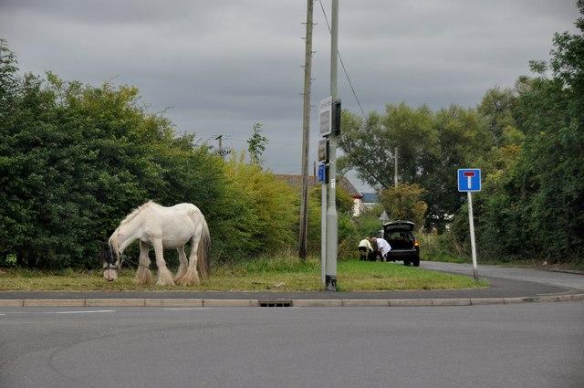 Teignbridge : Station Road