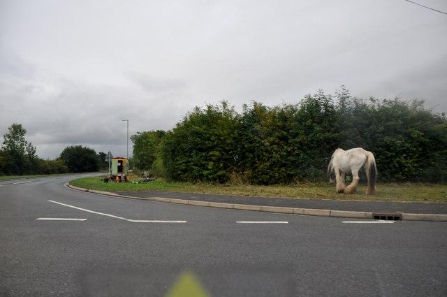 Teignbridge : Sannerville Way A379