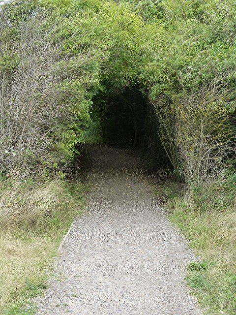 Entry into wooded section of New Lipchis Way