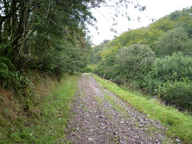 Bridleway down to Hoaroak Water