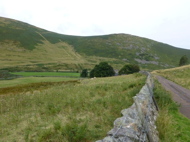 Dry stone wall and rough pasture
