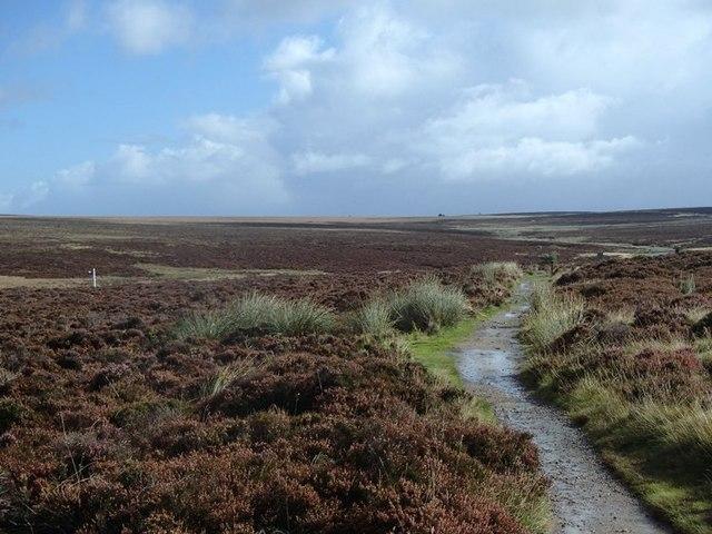 Moorland footpath, Cam Height