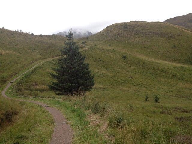 Path to Dun Deardail, Glen Nevis