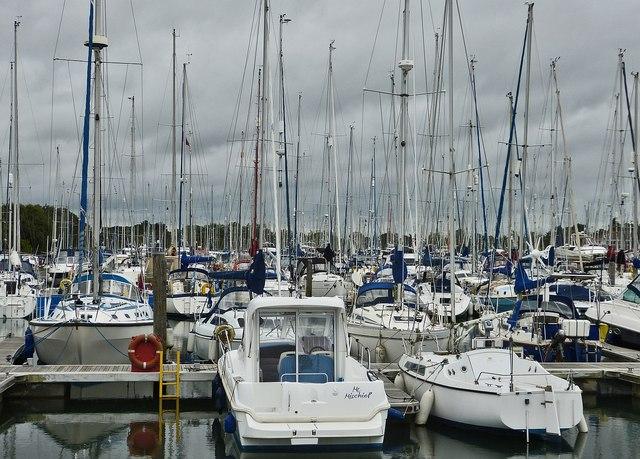 Boats galore in Chichester Marina