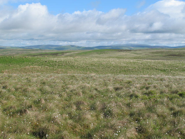Moorland south of Clemy's Cairn