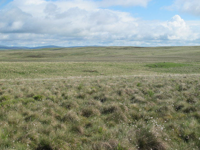 Moorland north of Blue Sow
