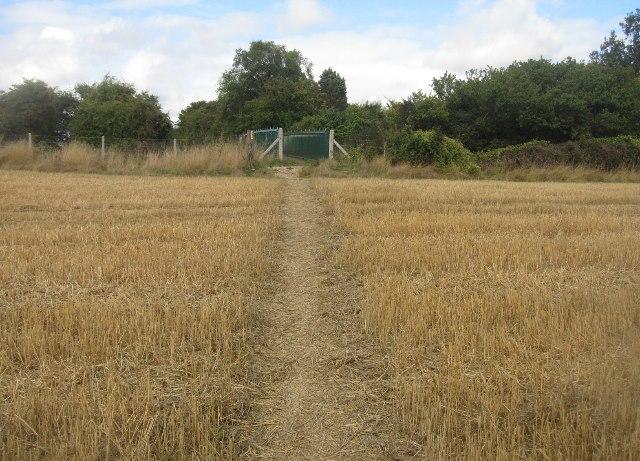 Path is still dry