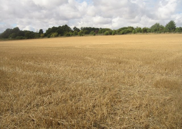 Post harvest scene