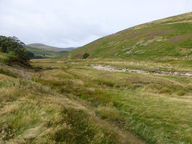Looking down the valley of Lambden Burn