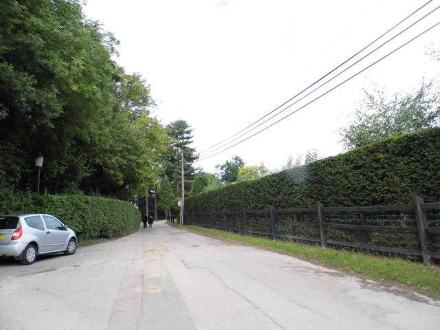 The road through Ponsbourne Park