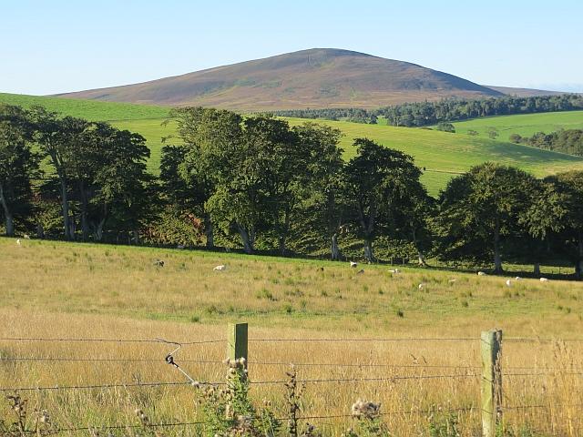 Field near Longformacus