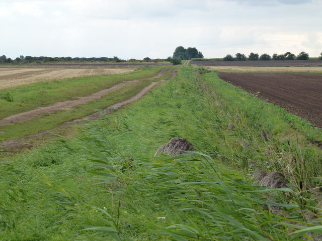 Richer's Drove near Whittlesey