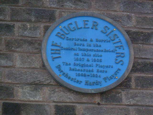 Blue plaque in South Street