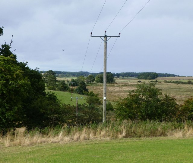 Electricity poles striding north