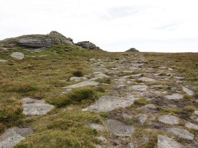 The Summit Plateau of High Willhays
