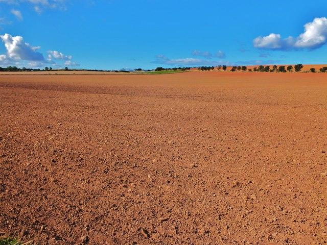 Arable land near Alemill