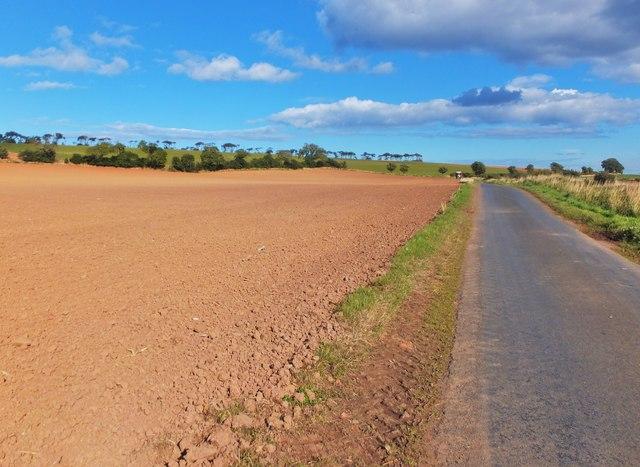 Road to Eyemouth