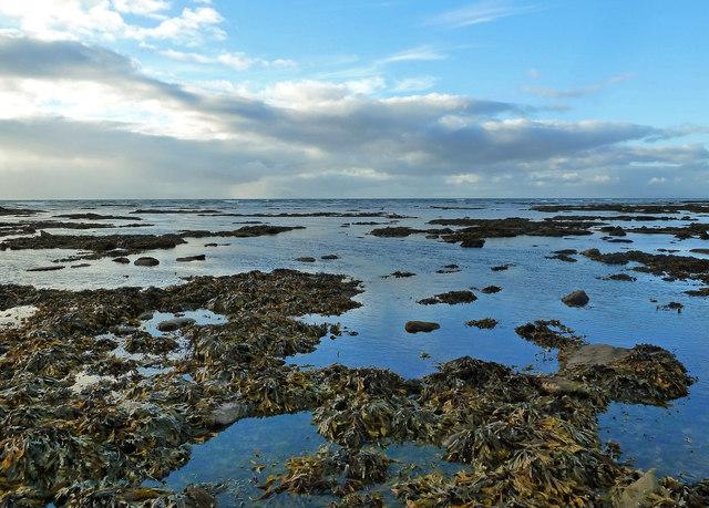 Maybole Shore View