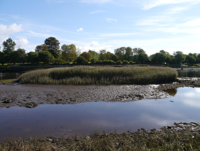Colin's Isle