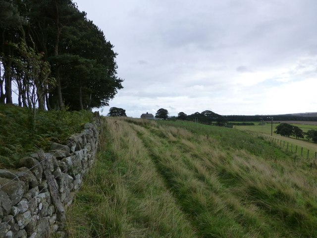 Track to Holywell