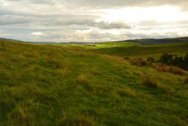 A path on Appletreewick Pasture