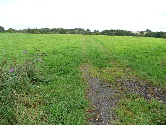 Vehicle tracks across farmland