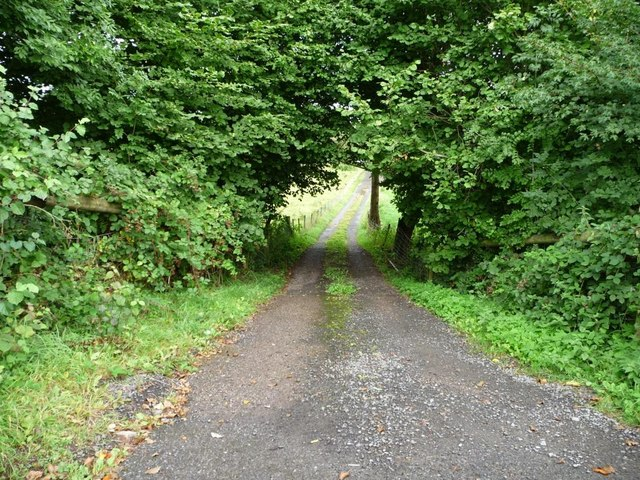 Steep access track, north of the Nant-y-derry road