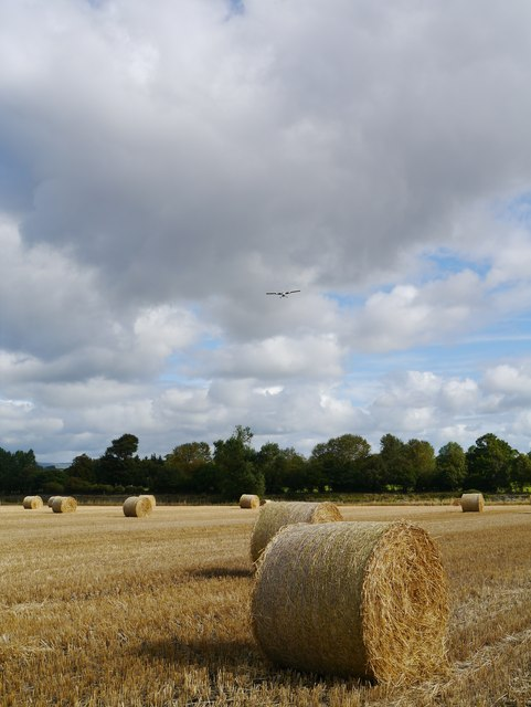 Baled Field On The Approach To Glasgow Airport