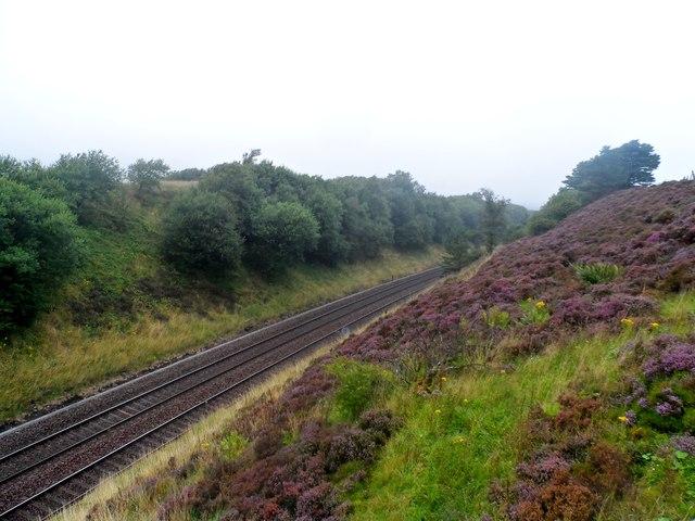 Heather and railway tracks near Dent Station