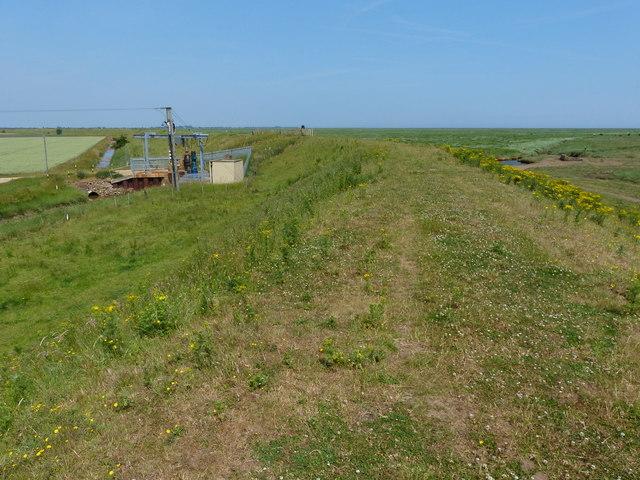 Sea bank along the Wash coast