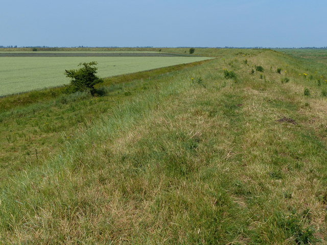 Looking north along the sea bank