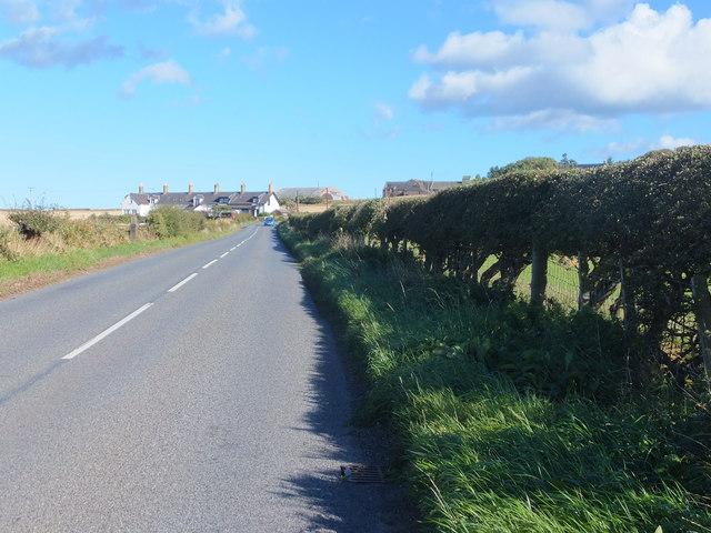 A1107 towards Hallydown