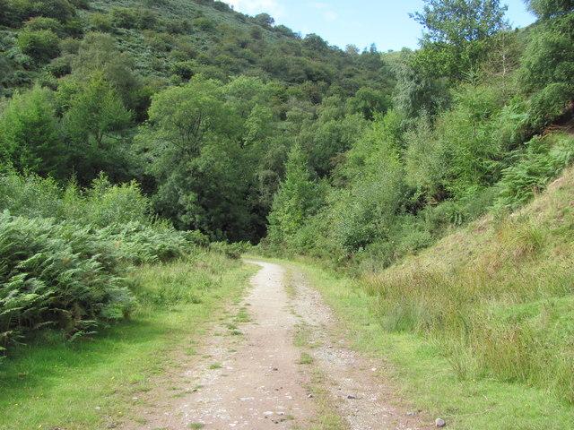 Track near Henllan