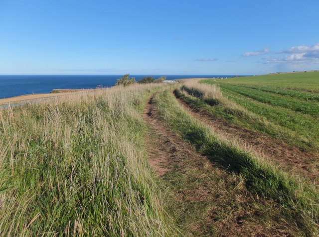 Track to Eyemouth