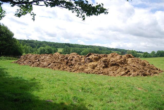 Large pile of manure!