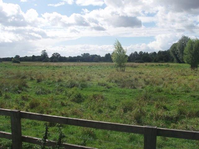 Langford Meadows