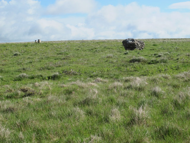 Moorland around Blue Sow