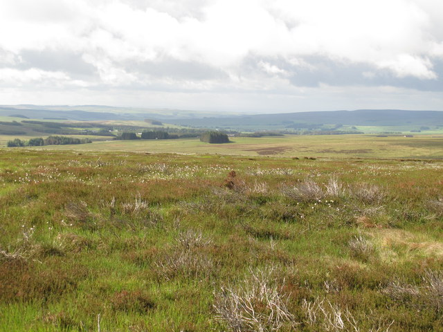Moorland south of Blue Sow