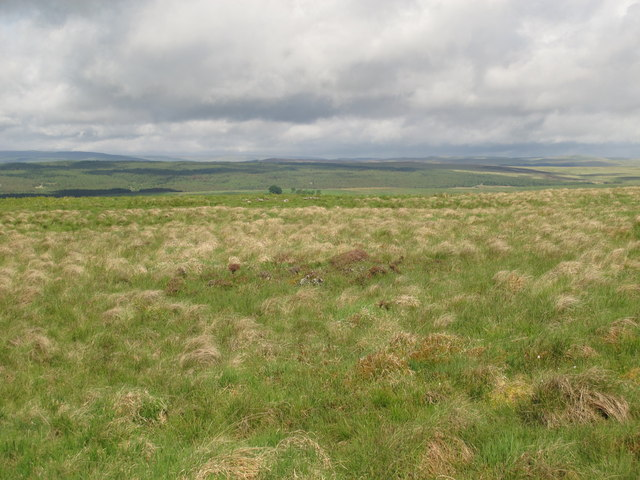 Moorland north of Blue Sow (2)