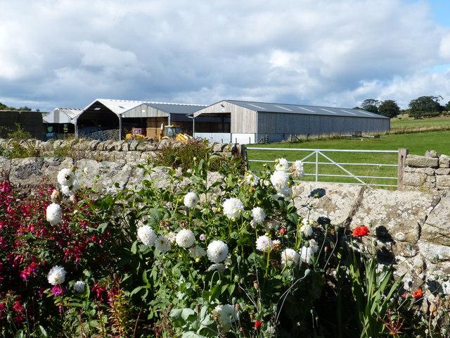 Swarland Old Hall Farm