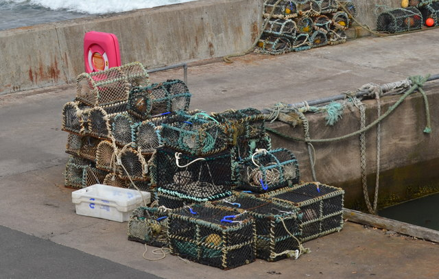 Fishing Tackle in the Harbour at John O'Groats