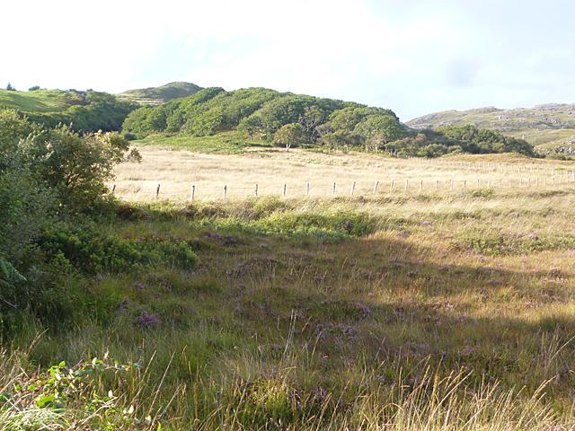 Scrubland near Achosnich