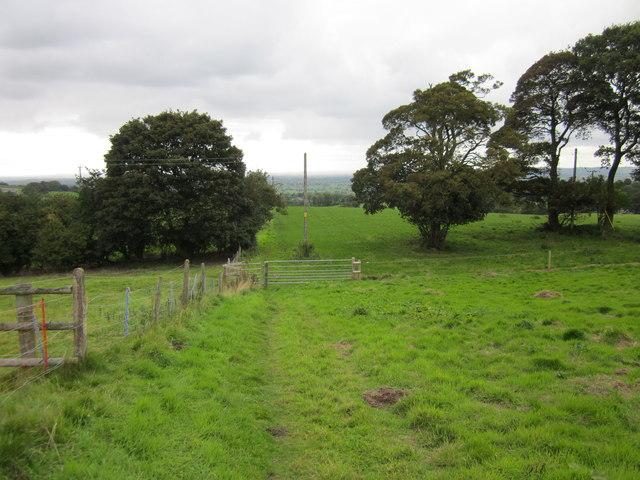 Footpath to Burwardsley