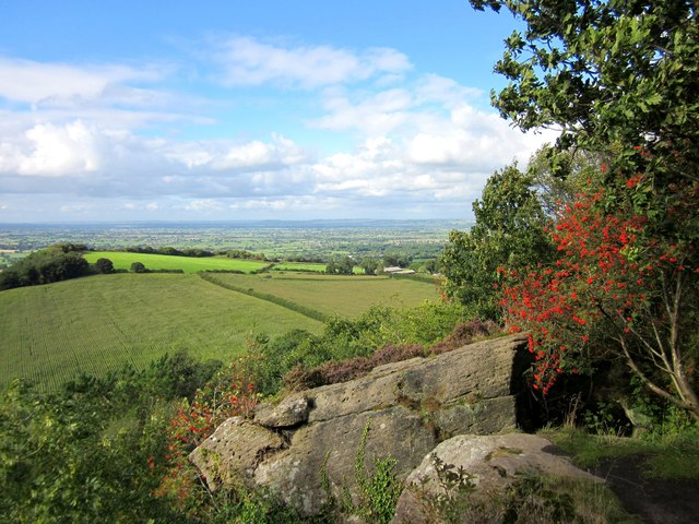 View towards Burwardsley Hill