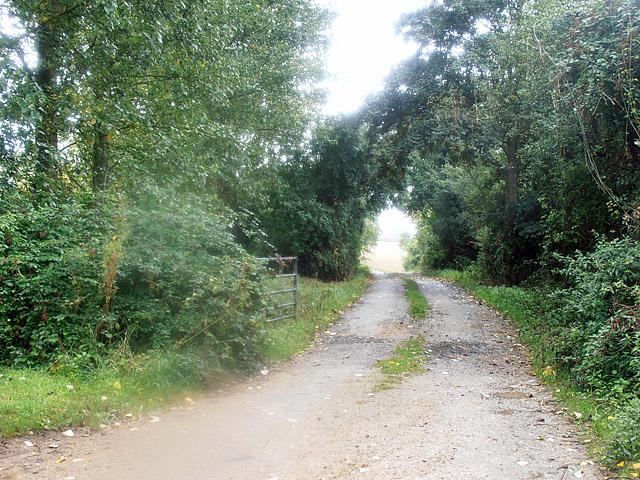 Cotswold Way 023 (Salters Lane)
