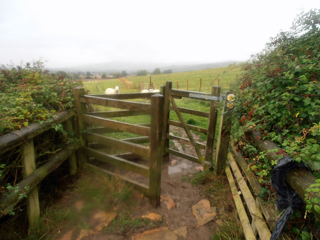 Cotswold Way 024