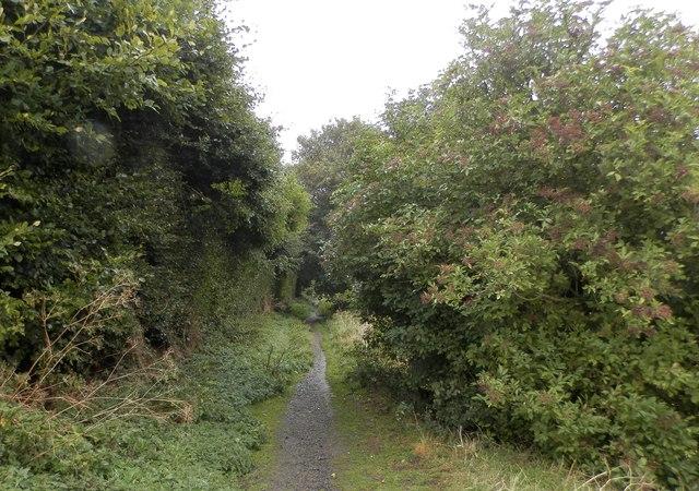 Track near Ashbank, Ardestie