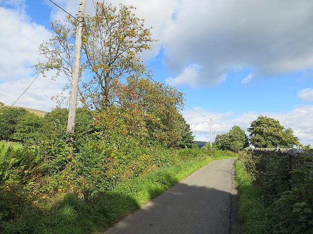 Upper Hillfoot Road